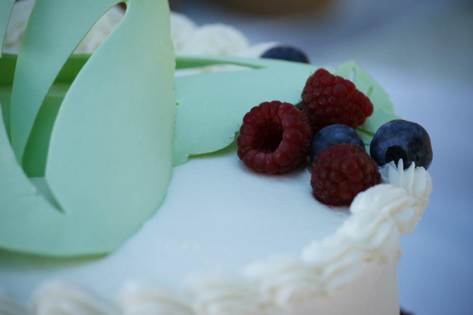 Caleb_and_Amanda_cake_7_23_12